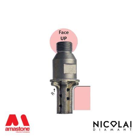 Profile Wheels 20 – Shape A30 R6 (Face up) - Nicolai