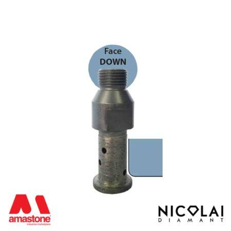 Profile Wheels 20 – Shape A30 R3 (Face down) - Nicolai