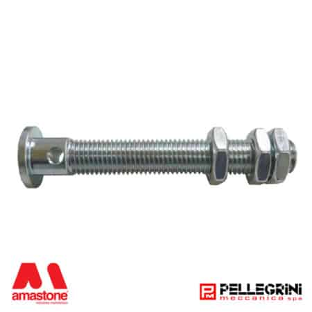Pellegrini – Pin for guide wheel Ø 170 mm